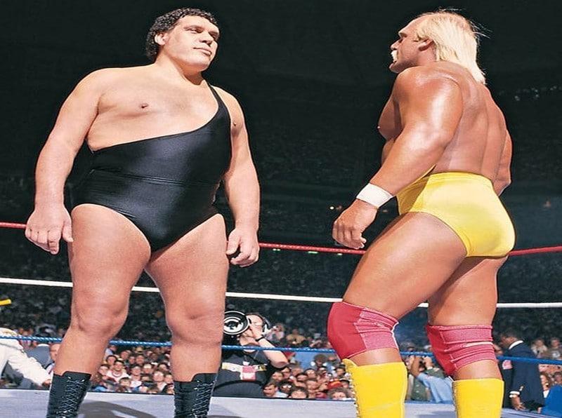 Hulk Hogan vs. Andre the Giant